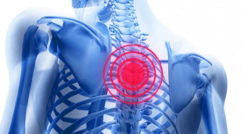 Болит позвоночник посередине спины после тренировки
